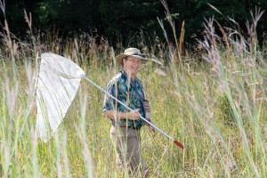 Dr. Andy Brower uses mimicry patterns to decode the evolutionary history of butterflies
