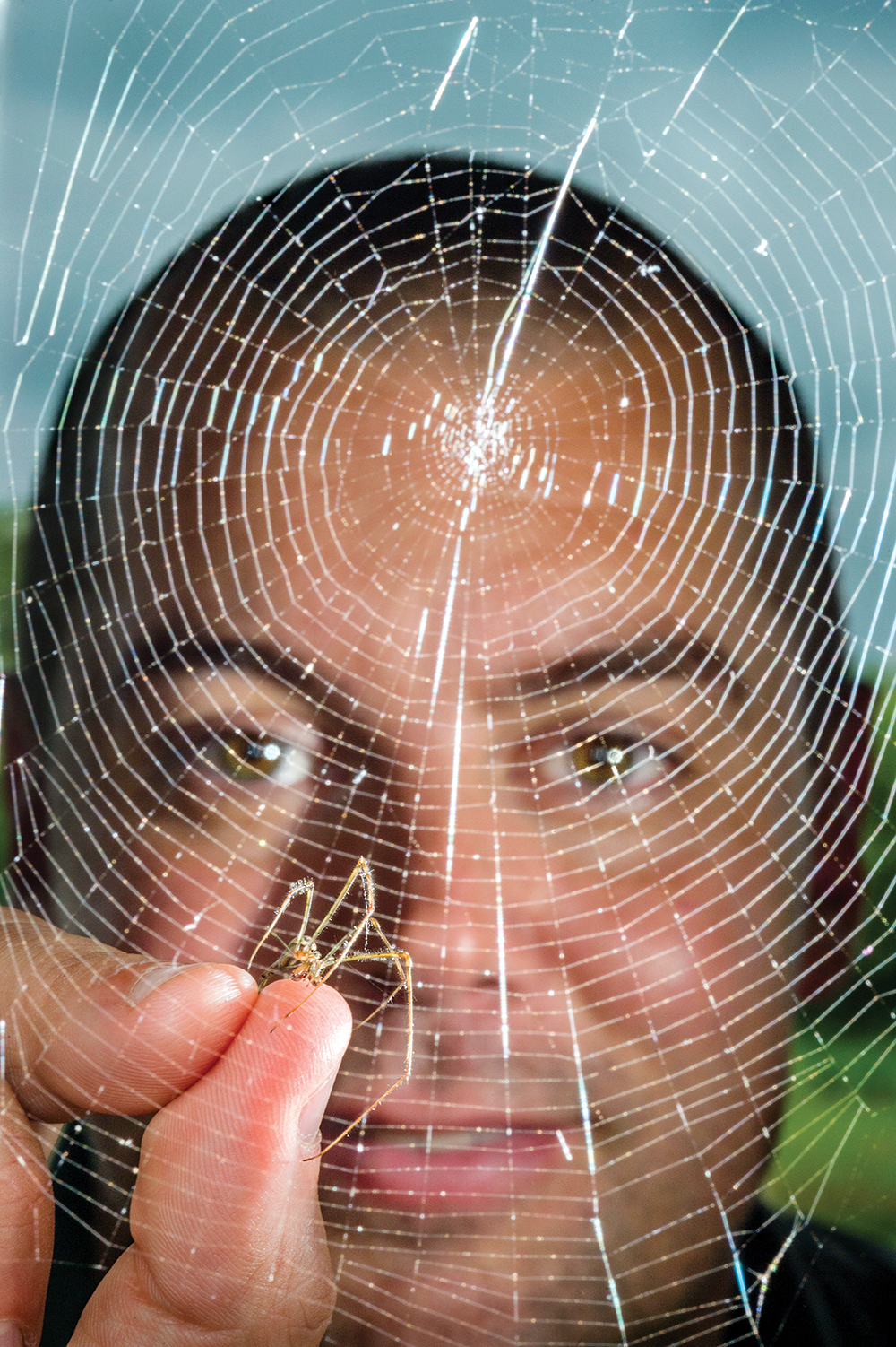 MTSU professor Ryan Otter gets up close with a long-jawed orb weaver spider as part of his environmental toxicology research following the 2008 TVA Kingston Fossil Plant coal fly ash slurry spill. (MTSU file photo by Andy Heidt)