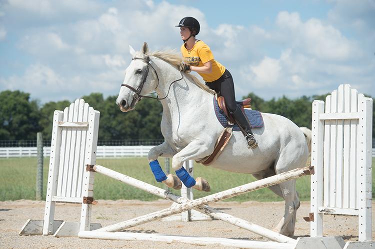 Equestrian team member Amanda Meade