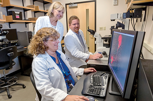 Graduate student Brock Arivett, Sharon Berk and Mary Farone. They have been involved in research that has led to the discovery of two species of bacteria (found in a cooling grower and hot tub) capable of infecting the nucleus of cells. The organisms have been named for Berk, a former Tennessee Tech researcher.